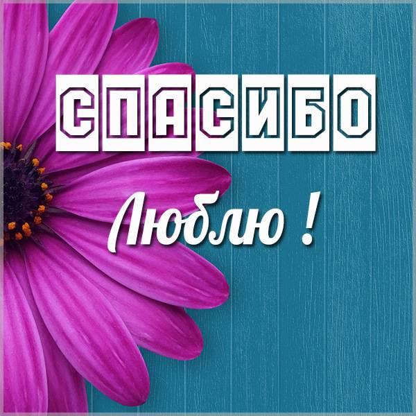 Открытка спасибо люблю - скачать бесплатно на otkrytkivsem.ru