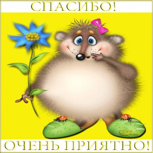 Открытка спасибо мне очень приятно - скачать бесплатно на otkrytkivsem.ru