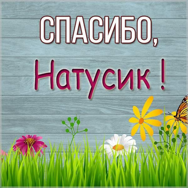Открытка спасибо Натусик - скачать бесплатно на otkrytkivsem.ru