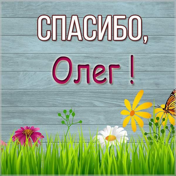 Открытка спасибо Олег - скачать бесплатно на otkrytkivsem.ru