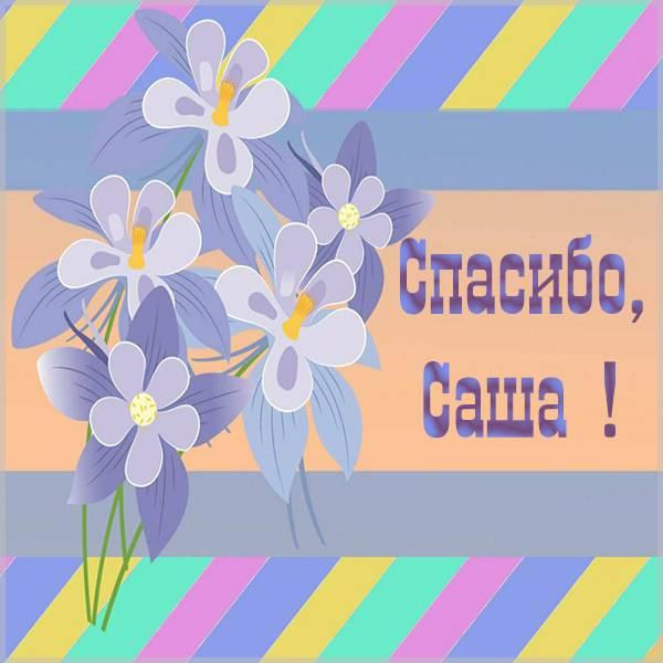Открытка спасибо Саша - скачать бесплатно на otkrytkivsem.ru