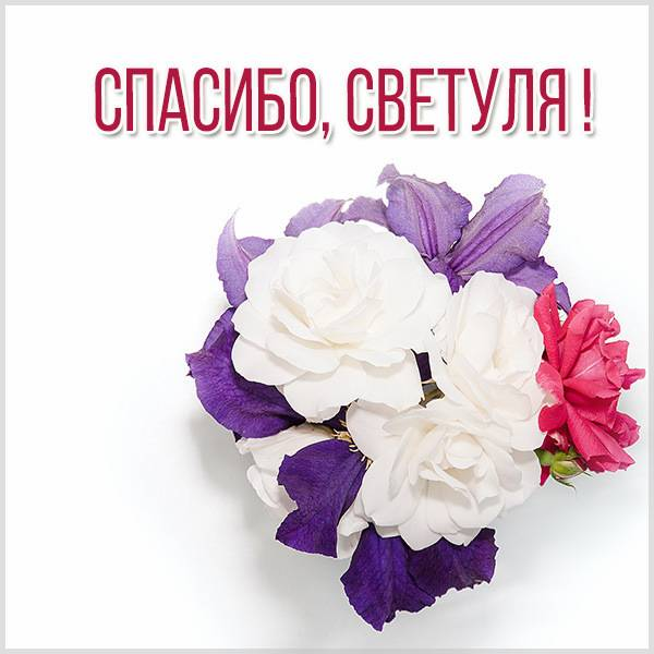 Открытка спасибо Светуля - скачать бесплатно на otkrytkivsem.ru