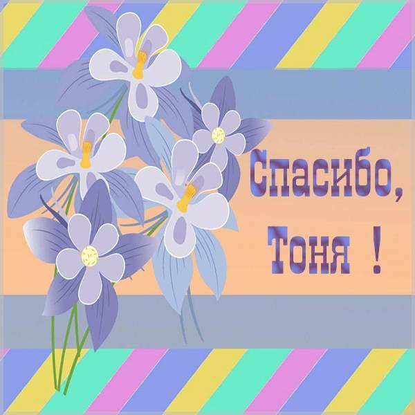 Открытка спасибо Тоня - скачать бесплатно на otkrytkivsem.ru