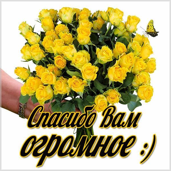 Открытка спасибо вам огромное - скачать бесплатно на otkrytkivsem.ru