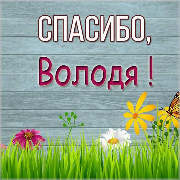 Открытка спасибо Володя - скачать бесплатно на otkrytkivsem.ru