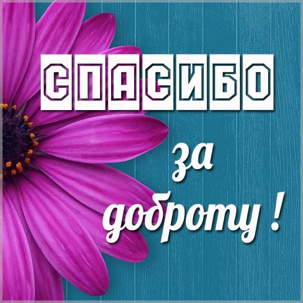 Открытка спасибо за доброту - скачать бесплатно на otkrytkivsem.ru