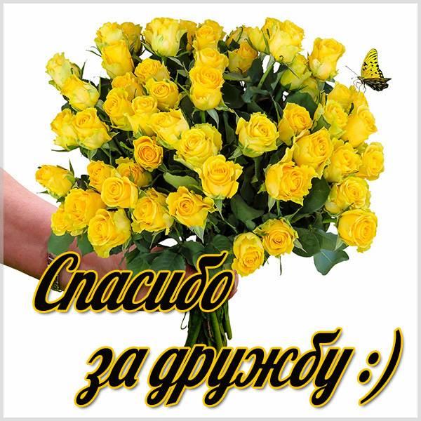 Открытка спасибо за дружбу подруге - скачать бесплатно на otkrytkivsem.ru