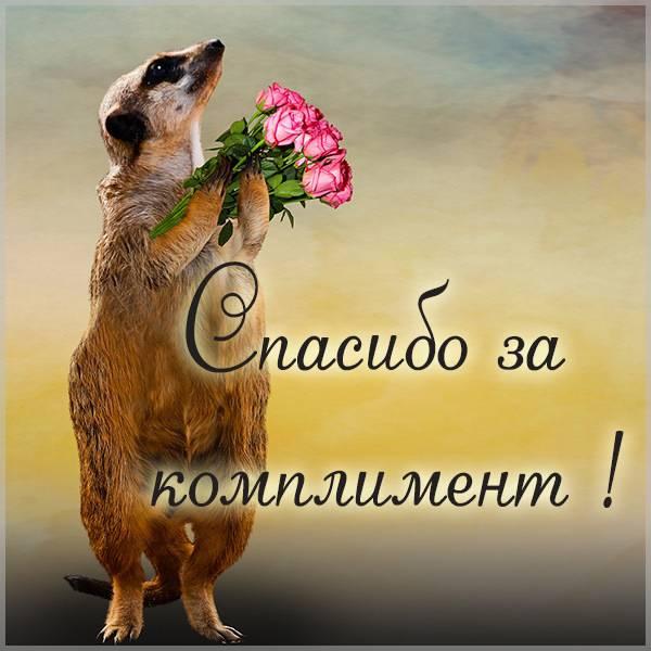 Открытка спасибо за комплимент - скачать бесплатно на otkrytkivsem.ru