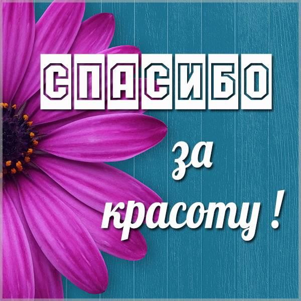 Открытка спасибо за красоту - скачать бесплатно на otkrytkivsem.ru