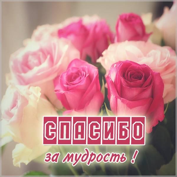 Открытка спасибо за мудрость - скачать бесплатно на otkrytkivsem.ru