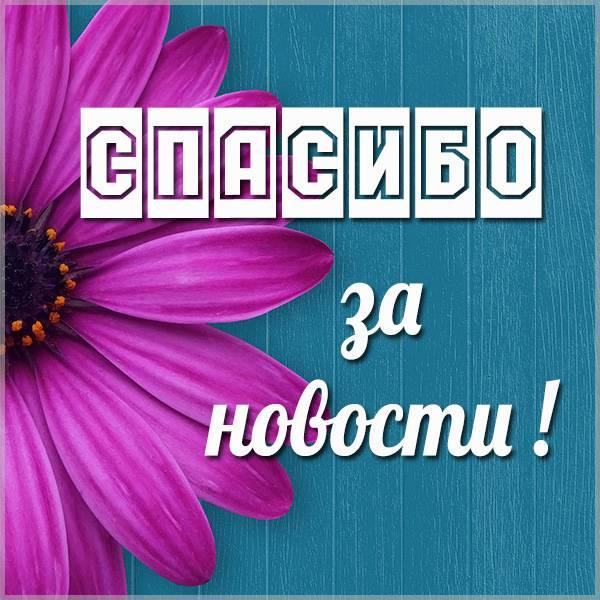 Открытка спасибо за новости - скачать бесплатно на otkrytkivsem.ru