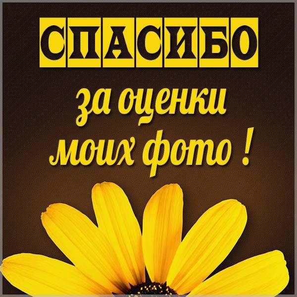 Открытка спасибо за оценки моих фото - скачать бесплатно на otkrytkivsem.ru