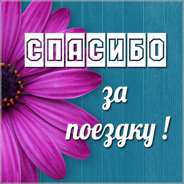 Открытка спасибо за поездку - скачать бесплатно на otkrytkivsem.ru