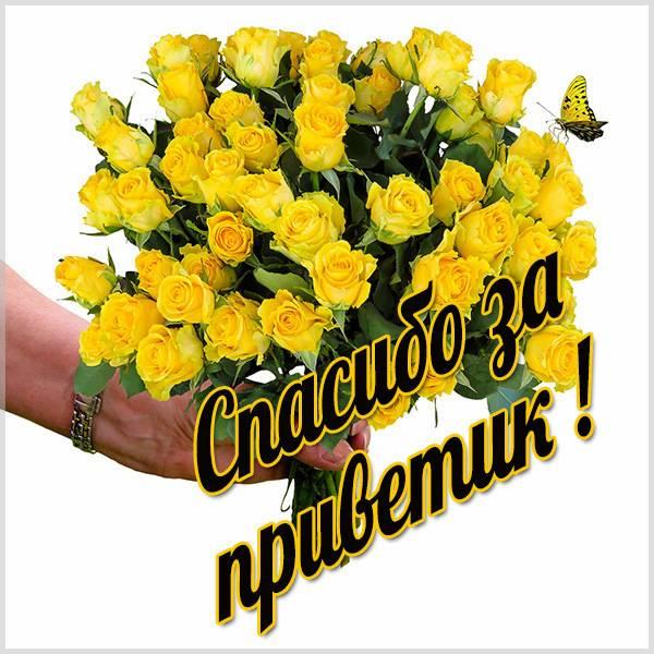 Открытка спасибо за приветик - скачать бесплатно на otkrytkivsem.ru