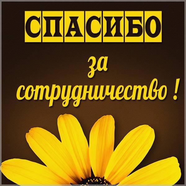 Открытка спасибо за сотрудничество - скачать бесплатно на otkrytkivsem.ru