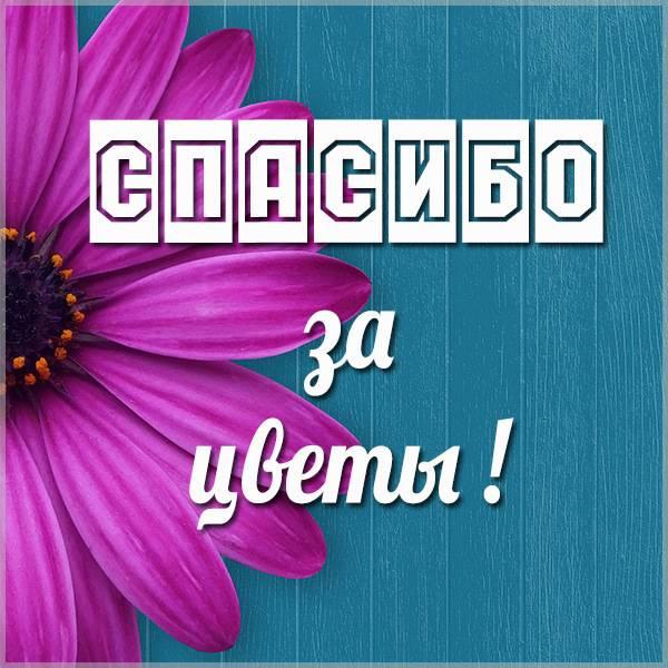 Открытка спасибо за цветы - скачать бесплатно на otkrytkivsem.ru