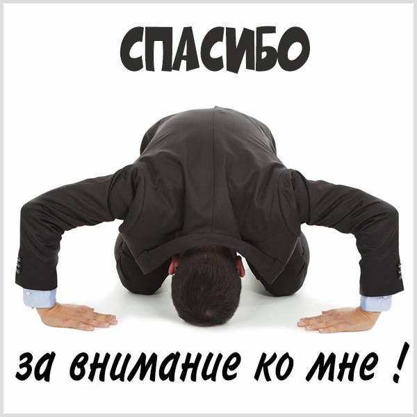 Открытка спасибо за внимание ко мне прикольная - скачать бесплатно на otkrytkivsem.ru