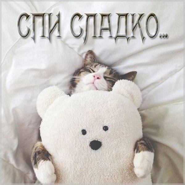 Открытка спи сладко - скачать бесплатно на otkrytkivsem.ru