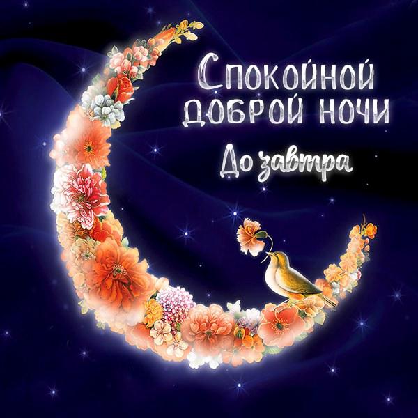 Открытка спокойной доброй ночи до завтра - скачать бесплатно на otkrytkivsem.ru