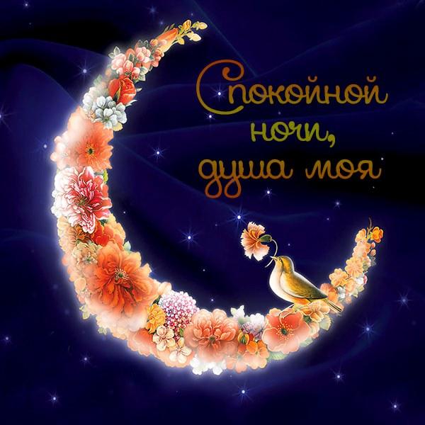 Открытка спокойной ночи душа моя - скачать бесплатно на otkrytkivsem.ru