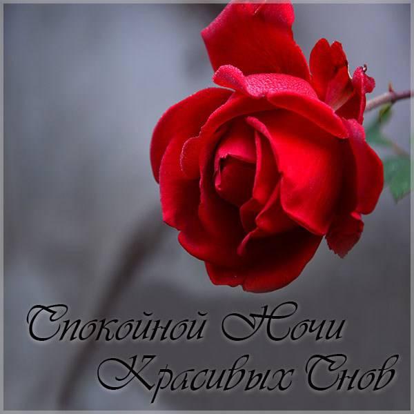 Открытка спокойной ночи красивых снов - скачать бесплатно на otkrytkivsem.ru