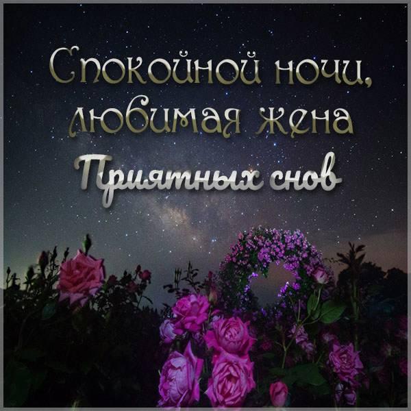 Открытка спокойной ночи любимой жене приятных снов - скачать бесплатно на otkrytkivsem.ru