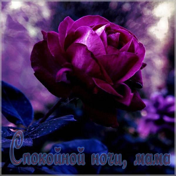 Открытка спокойной ночи мама - скачать бесплатно на otkrytkivsem.ru