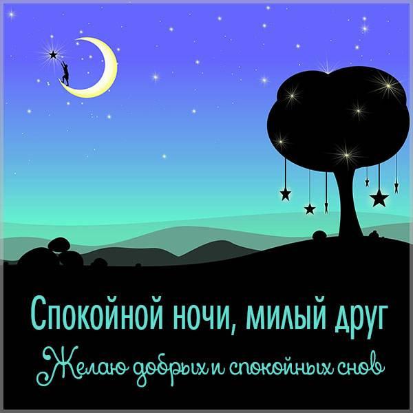 Открытка спокойной ночи милый друг - скачать бесплатно на otkrytkivsem.ru