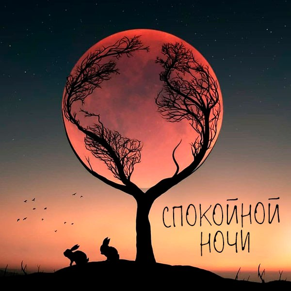 Открытка спокойной ночи пейзаж - скачать бесплатно на otkrytkivsem.ru