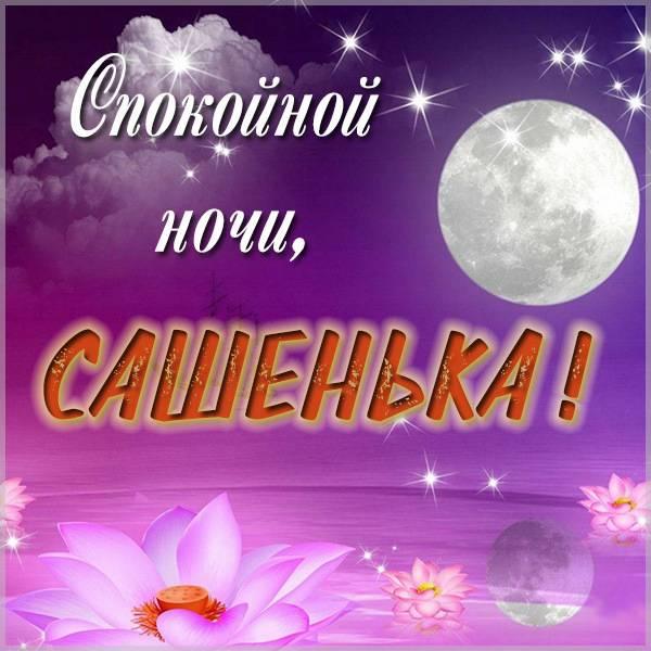 Открытка спокойной ночи Сашенька - скачать бесплатно на otkrytkivsem.ru