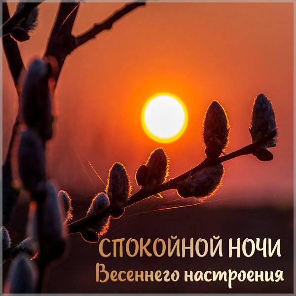 Открытка спокойной ночи весеннее настроение - скачать бесплатно на otkrytkivsem.ru