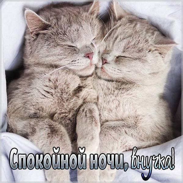 Открытка спокойной ночи внучке - скачать бесплатно на otkrytkivsem.ru