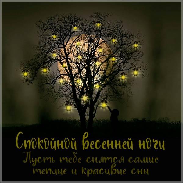 Открытка спокойной весенней ночи - скачать бесплатно на otkrytkivsem.ru