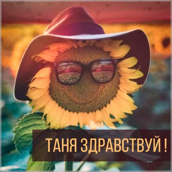 Открытка Таня здравствуй - скачать бесплатно на otkrytkivsem.ru