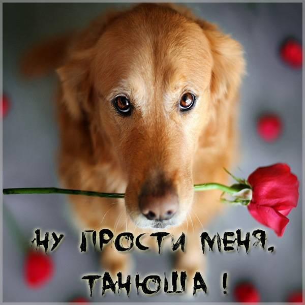 Открытка Танюша прости меня - скачать бесплатно на otkrytkivsem.ru