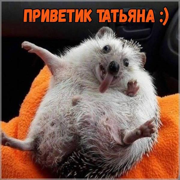 Открытка Татьяна приветик - скачать бесплатно на otkrytkivsem.ru