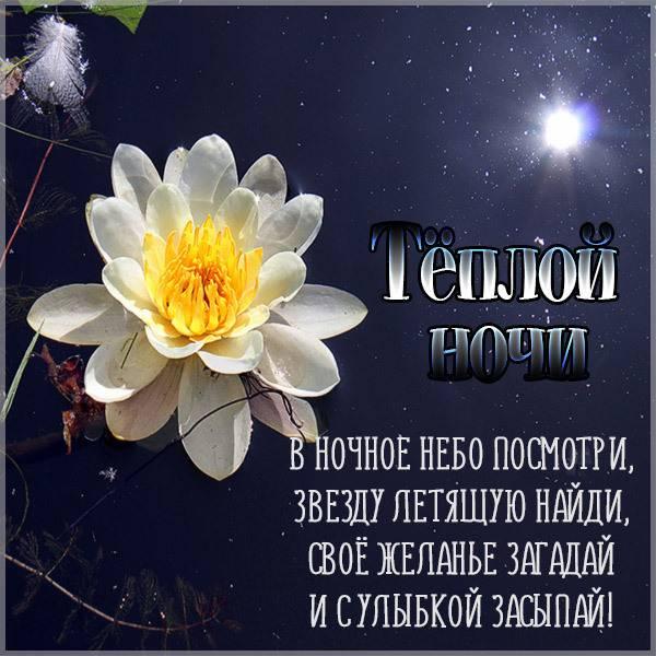 Открытка теплой ночи - скачать бесплатно на otkrytkivsem.ru