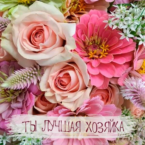 Открытка ты лучшая хозяйка - скачать бесплатно на otkrytkivsem.ru