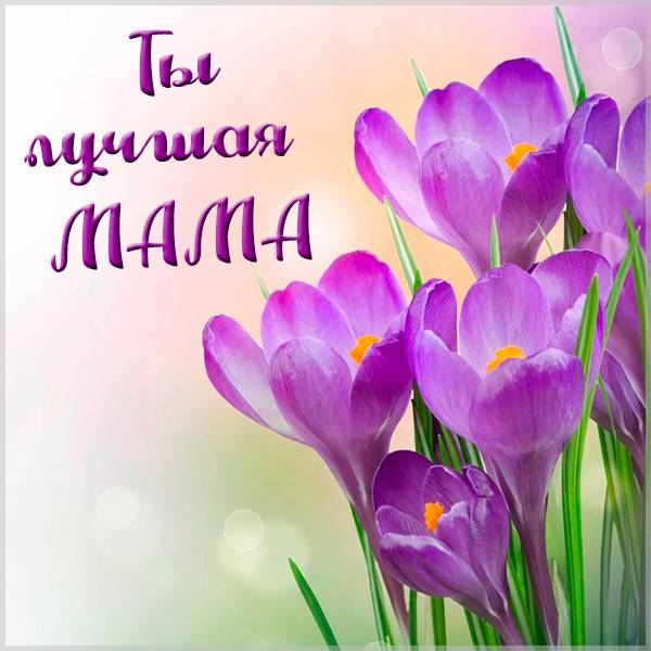 Открытка ты лучшая мама - скачать бесплатно на otkrytkivsem.ru