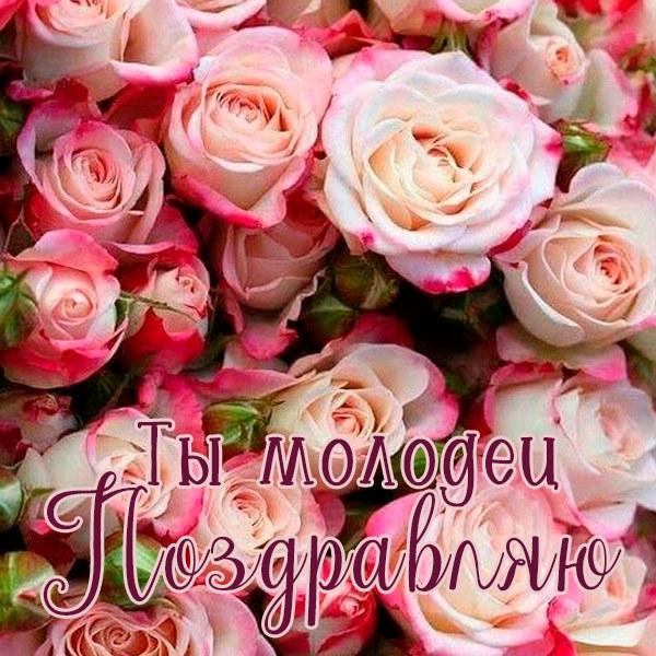 Открытка ты молодец поздравляю - скачать бесплатно на otkrytkivsem.ru
