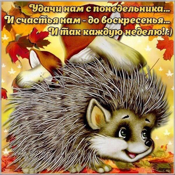 Открытка удачного понедельника - скачать бесплатно на otkrytkivsem.ru