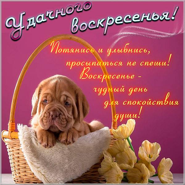 Открытка удачного воскресенья - скачать бесплатно на otkrytkivsem.ru