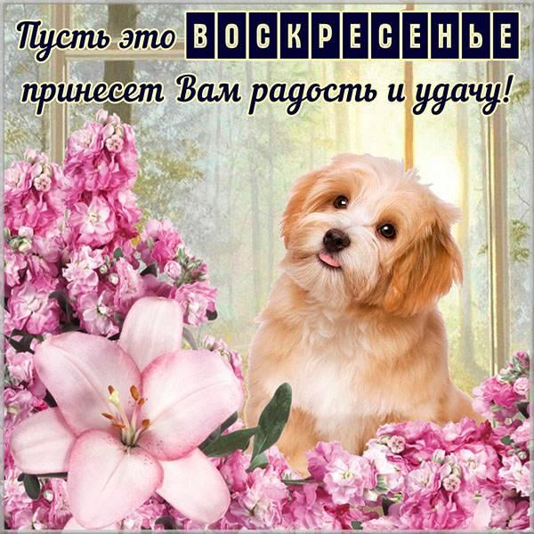 Открытка удачного воскресного дня - скачать бесплатно на otkrytkivsem.ru