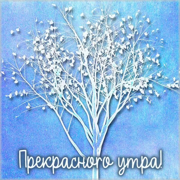 Открытка утро зимы - скачать бесплатно на otkrytkivsem.ru