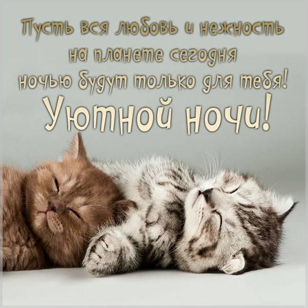 Открытка уютной ночи - скачать бесплатно на otkrytkivsem.ru