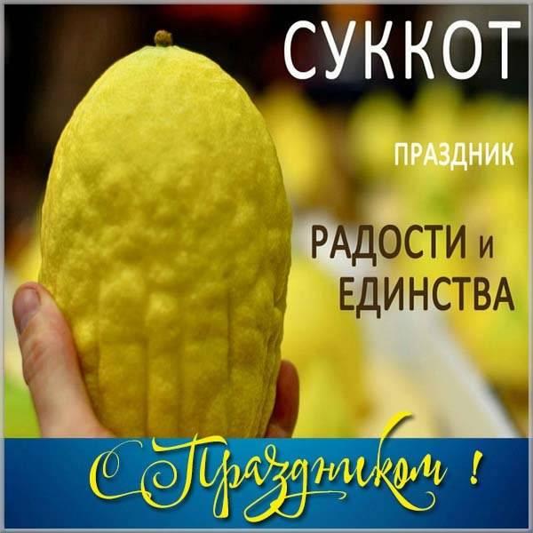 Открытка в Суккот - скачать бесплатно на otkrytkivsem.ru