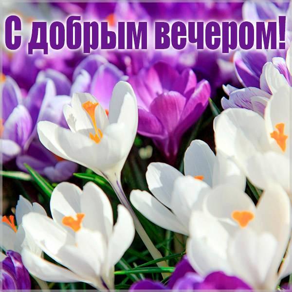 Открытка весенняя с добрым вечером - скачать бесплатно на otkrytkivsem.ru