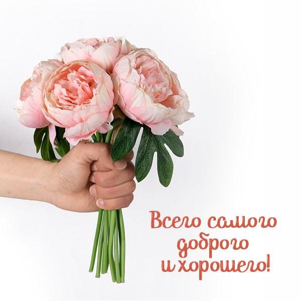 Открытка всего доброго и хорошего - скачать бесплатно на otkrytkivsem.ru
