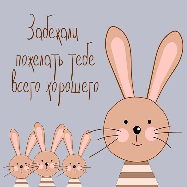 Открытка всего хорошего прикольная - скачать бесплатно на otkrytkivsem.ru
