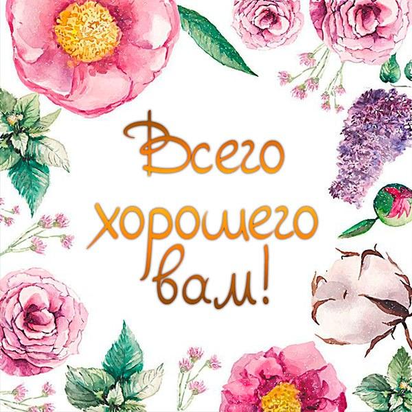 Открытка всего хорошего вам - скачать бесплатно на otkrytkivsem.ru